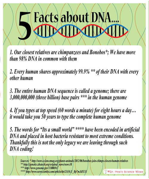 Amazing Dna Facts
